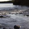 Tartan Rapids