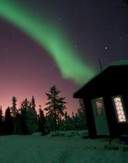 All Night Aurora